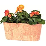 Novelty MFG 08153 Oval Planter, 15-Inch, Brown
