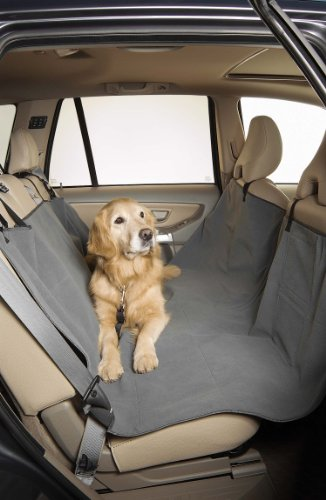 Weight To Sit In Front Seat front-373609