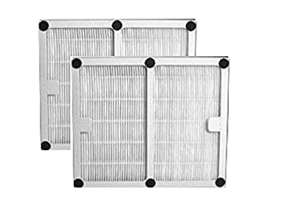 2-PACK Idylis® B Hepa Home Revolution Brand Air Purifier Filter; Replacement Made To Fit Idylis® IAP-10-125, IAP-10-150; Model # IAF-H-100B, IAFH100B