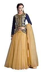 Vipani Fashions Designer Women's Lehenga Choli