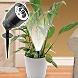 Mini Cordless Indoor Plant Light