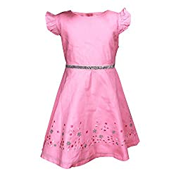 ShopperTree Pink Cambric Embroidary Dress(ST-1416_Pink_18-24M)
