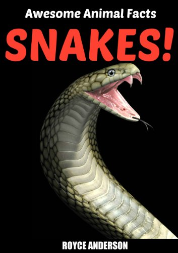 Free Kindle Book : SNAKES!: Fact and Photo Book for Kids. (Awesome Animal Facts 1)
