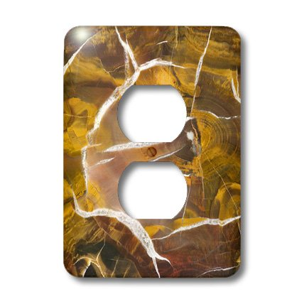 Lsp_85210_6 Danita Delimont - Natural Patterns - Argentina. Petrified Wood Pattern - Sa01 Bja0044 - Jaynes Gallery - Light Switch Covers - 2 Plug Outlet Cover