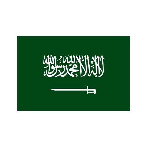 Saudi Arabia Flag 3ft x 5ft Nylon - Buy Saudi Arabia Flag 3ft x 5ft Nylon - Purchase Saudi Arabia Flag 3ft x 5ft Nylon (US Flag Store, Home & Garden,Categories,Patio Lawn & Garden,Outdoor Decor,Banners & Flags)