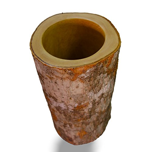 Roro 9 in Natural Wood Branch Vase with Bark and Glass Inner Vase