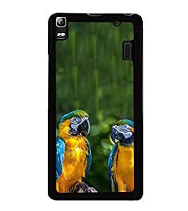 Blue Yellow Parrots 2D Hard Polycarbonate Designer Back Case Cover for Lenovo A7000 :: Lenovo A7000 Plus :: Lenovo K3 Note