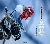 薔薇—秋から冬へ 大貫亘写真集