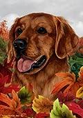 Golden Retriever Red Dog Tamara Burnett Fall Leaves Garden Dog Breed Flag 28'' x 40''
