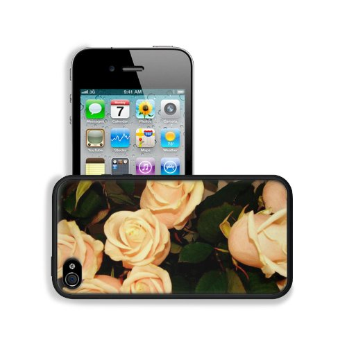 Roses Flowers Tea Buds Tender Apple Iphone 4 / 4S Snap Cover Premium Leather Design Back Plate Case Customized Made To Order Support Ready 4 7/16 Inch (112Mm) X 2 3/8 Inch (60Mm) X 7/16 Inch (11Mm) Liil Iphone_4 4S Professional Cases Touch Accessories Gra
