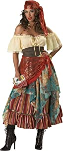 InCharacter Costumes, LLC Fortune Teller Dress, Tan/Red/Blue, Large