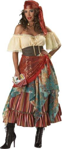 InCharacter Costumes, LLC Fortune Teller Dress, Tan/Red/Blue, Medium