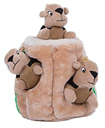 Outward Hound Hide A Squirrel Dog Toy Plush Dog Squeaky Toy Puzzle, 4 Piece, Jumbo