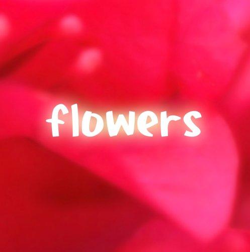 compilation album 『flowers』 初回プレス特典/DVD付