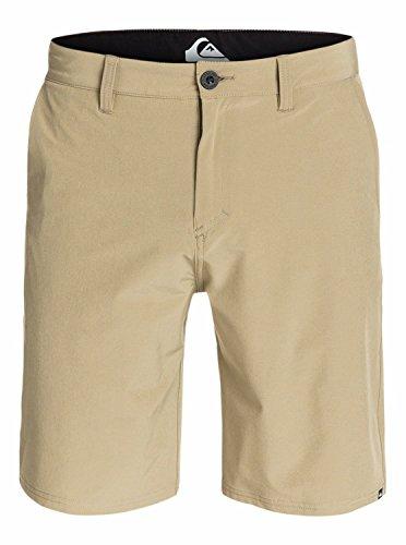 Quiksilver Men's Everyday Solid Amphibian 21 Inch Hybrid Short,Elmwood,36 Quiksilver Casual Shorts
