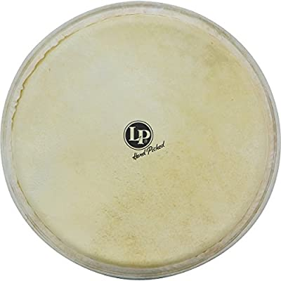 Latin Percussion LP961 12-1/2-Inch Djembe Replacement Head