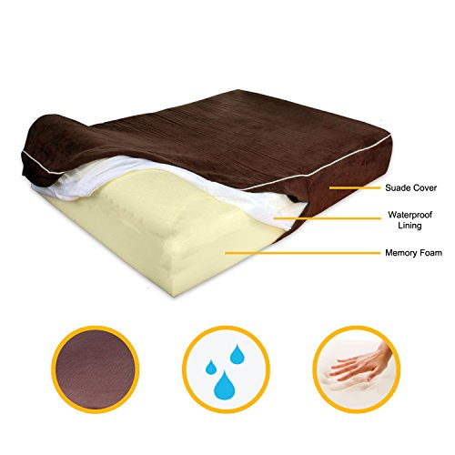 Orthopedic Dog Bed With Pillow