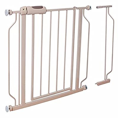 Evenflo Easy Walk-Thru Gate