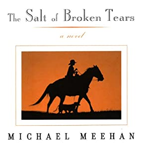 The Salt of Broken Tears: A Novel | [Michael Meehan]