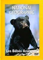 National Geographic : Les Bébés animaux