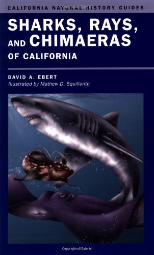 Sharks, Rays, and Chimæras of California (California Natural History Guides) (The Biology Of Sharks And Rays compare prices)