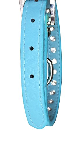 Pets-House-Dog-Collars-for-Small-Dogs-Prime-Medium-Blue