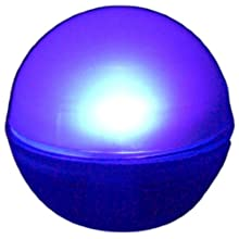 "Fortune Products FB-1PP Fairy Berries Magical LED Light, 3/4"" Diameter, Purple (Case of 10)"