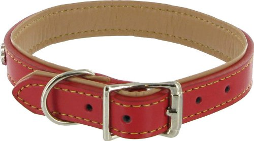kakadu leather dog collar review