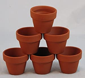 "Amazon.com: 10 Mini 1 3/4"" Clay Pots - Great for Plants and Crafts"