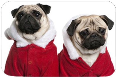 2 Pug Dogs with Christmas Outfits Holiday Cutting Board - 2 Pug Dogs With Christmas Outfits Holiday Cutting Board Kitchen