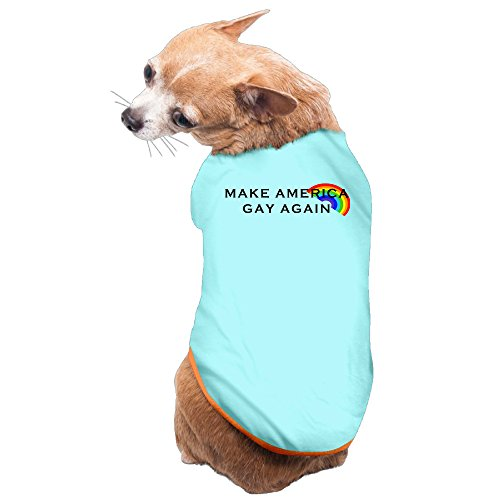 Trump and Clinton Halloween Costumes - Choose Edgy or Funny - Funny Sayings Make America Gay Again -Anti-Trump Pro Pet Dog 100% Fleece Vest Clothing SkyBlue US