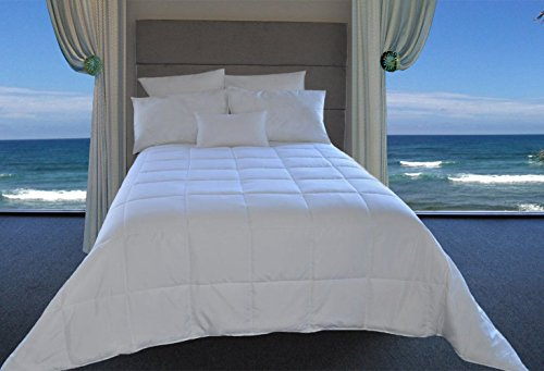 Best Buy! Natural Comfort White Down Alternative Comforter with Embossed Microfiber Shell, Light Wei...