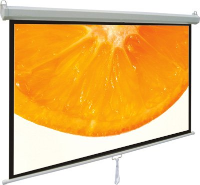"VIVO 100"" Projector Screen, Photo"