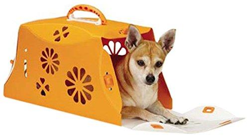 Guardian Gear Color-Me Crate, Blossom Orange Crush