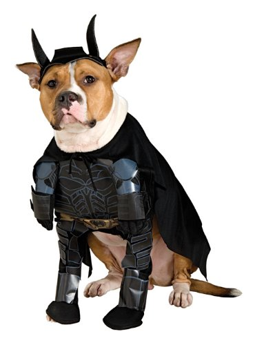 Batman The Dark Knight Pet Costume, Medium - 1