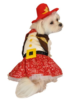 Cowgirl Pet Costume