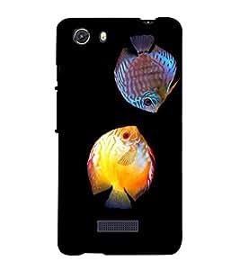 printtech Colored Fish Back Case Cover for Micromax Q372 Unite 3