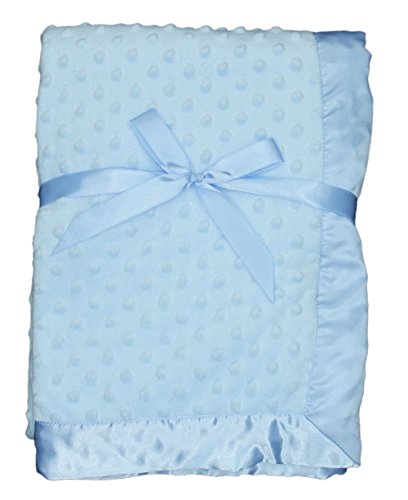 LUXEHOME Super Soft Microfiber Plush Baby Blanket (Blue) (Personalized Baby Blanket Blue compare prices)