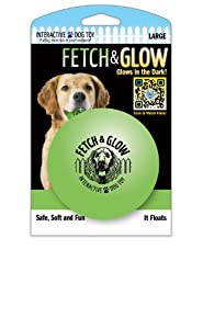 Fetch & Glow Ball - Large(Buddy's Glow Ball Jr.)  [colors vary]