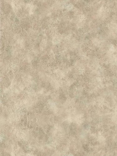 Wallpaper Brewster Studio K&B 239-53458