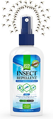 Eco Defense Bug Spray - All Natural Mosquito Repellent - Repel Mosquitoes & Bugs Guaranteed - Perfect for Kids & Adults - Lasts for Hours - DEET FREE - Keep Insects Off or Your Money Back