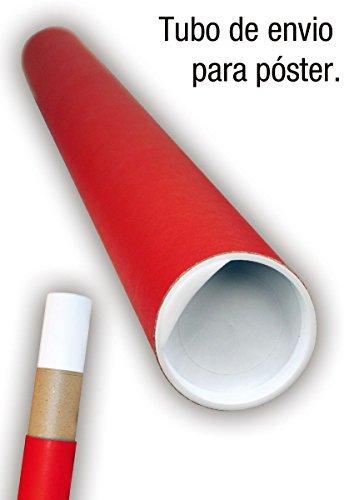 Pster-Pokmon-Eevee-Evolucin-915cm-x-61cm-embalaje-de-regalo