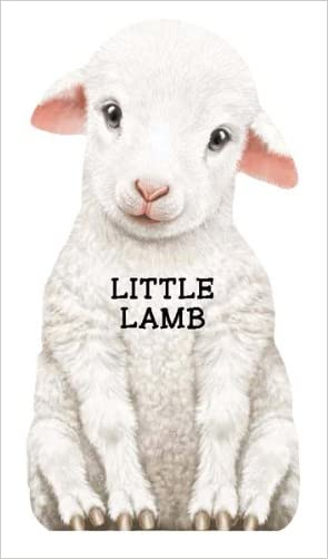 Little Lamb (Mini Look at Me Books)
