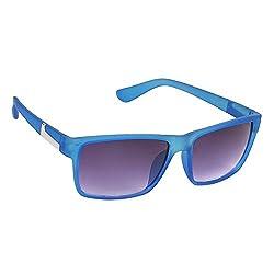 Hawai Modern Blue Frame Sunglass