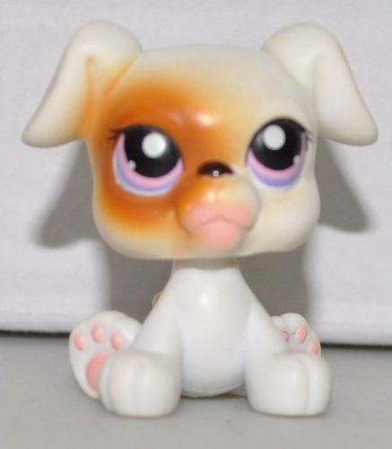Boxer #84 (Sitting: White, Brown Eyepatch, Purple Eyed) Littlest Pet Shop (Retired) Collector Toy - LPS Collectible Replacement Single Figure - Loose (OOP Out of Package & Print) - 1