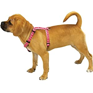 Guardian Gear Nylon Two Tone Pawprint Dog Harness, 14 to 20-Inch, Pink