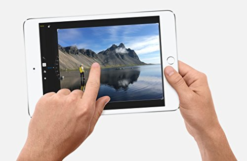 Apple iPad mini 4 (7,9 Zoll) Tablet-PC + Extra Zubehör - 3