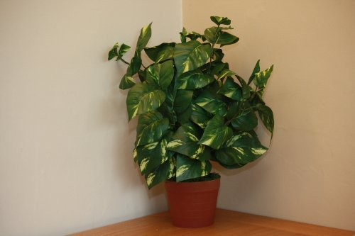 homeandgardenuk-large-artificial-scindapsus-plant-in-a-pot-variegated-green-foliage-office-or-house-
