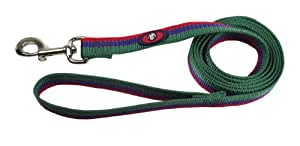 Hamilton Nylon Dog Lead with Swivel Snap and Reflective Threads, 1-Inch by 4-Feet, Green/Blue/Red