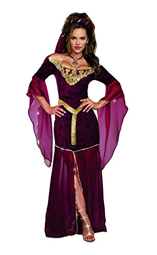 Dreamgirl Women's Sexy Royal Maiden Costume, Medieval Enchantress